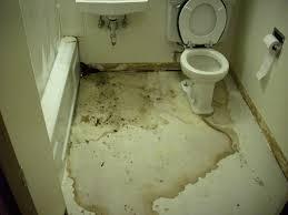Bathroom Floor Repair