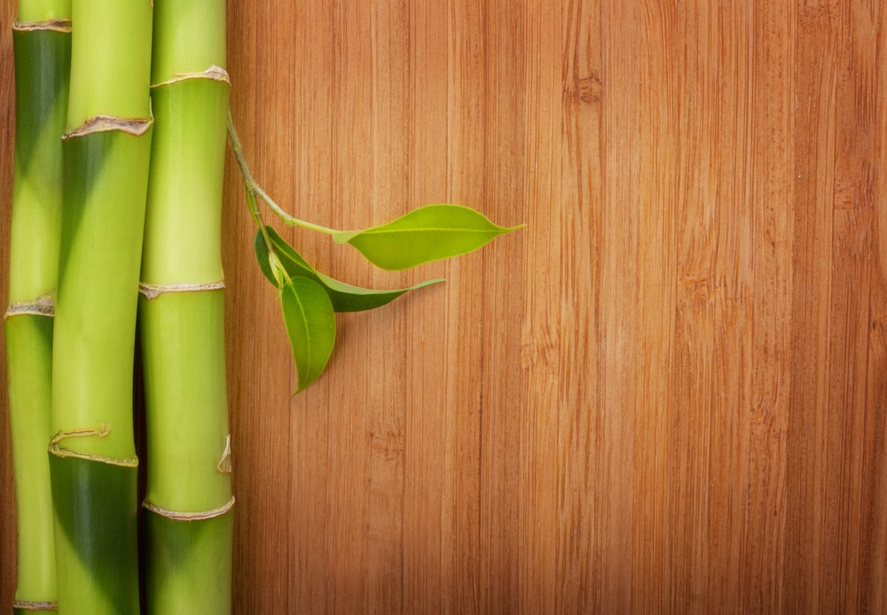 How to clean bamboo floors contractor quotes for How do you clean a bamboo floor
