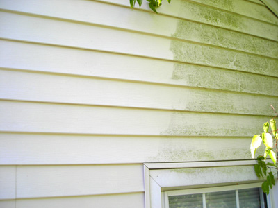 Spring Cleaning How To Clean Vinyl Siding School Of