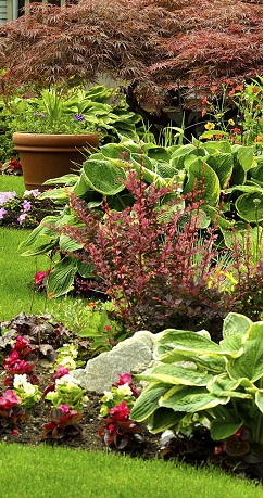 Landscaping Contractors Near Me Contractor Quotes