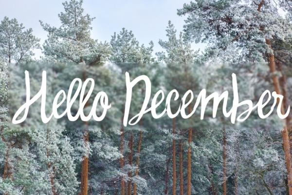 December Safety Tips