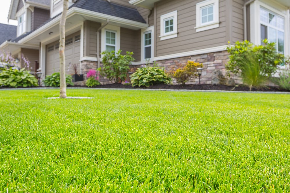 How to landscape your front yard contractor quotes for How to landscape front yard