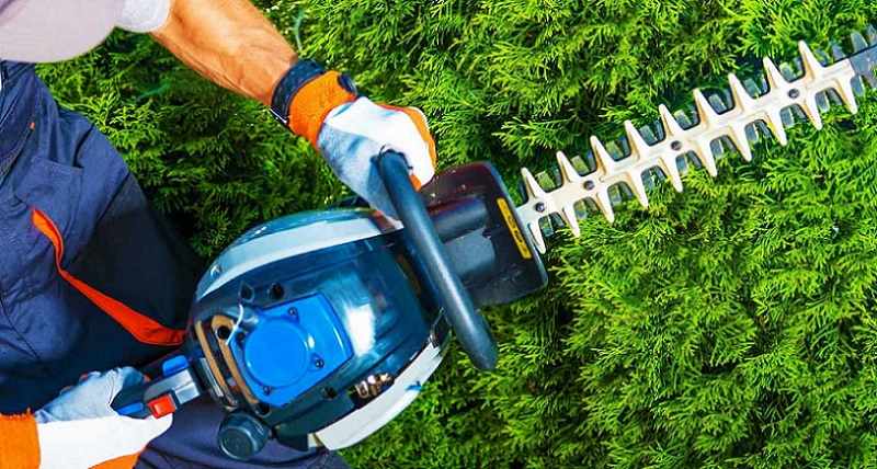 Tools List For Landscaping : Of the landscaping tools list is vast