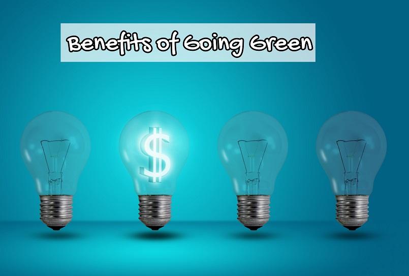 Illustration of saving money using light bulbs