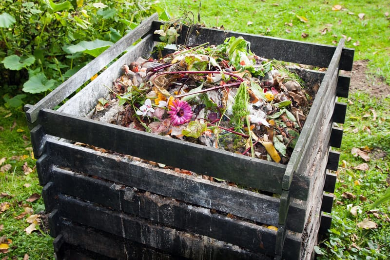 organic waste in a pile outside