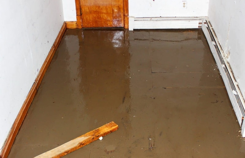 basement with water in it
