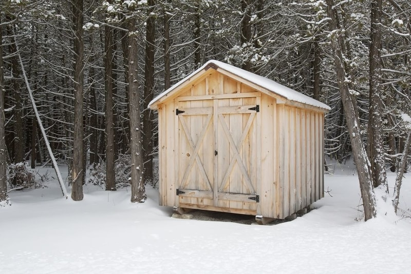 shed in the middle of winter