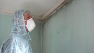 mold being inspected