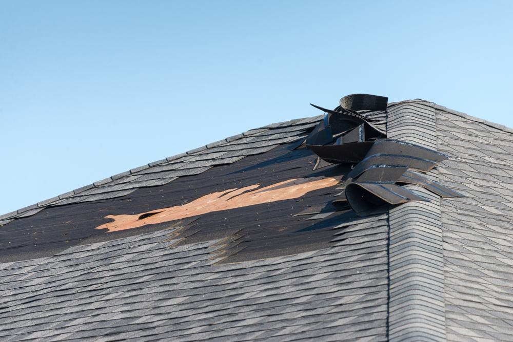roof shingles that have been damaged